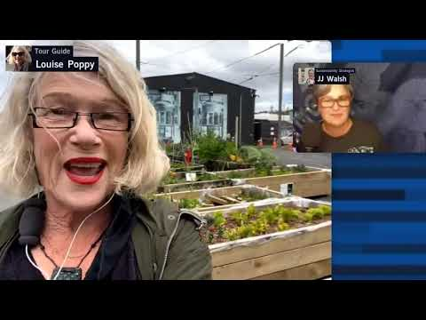 Auckland New-Zealand 🌺Community Gardening in the City   Livestream Walk with Louise Poppy