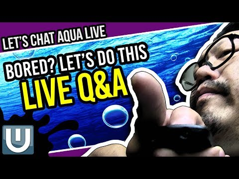 Let's Chat Aqua Live! Chat and Questions and More!