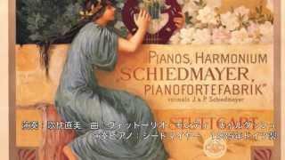 Schiedmayer Piano シードマイヤー ピアノ