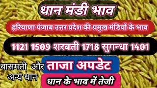 10Dec. 2019 dhan mandi bhav|1121 rice price today||1509 paddy price today ||dhan mandi rate today ||