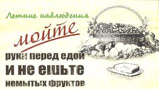 Летние наблюдения ☭ Киев - Советская Украина - УССР ☆ Документальный фильм СССР ☭ Гигиена ☆ 1973
