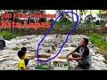 Perkutut  Ekor Kita Lepas Liarkan Perkutut Lokal  Mp3 - Mp4 Download