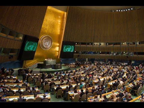 قرار أممي يدين انتهاكات حقوق الإنسان في كوريا الشمالية  - نشر قبل 7 ساعة