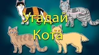 Угадай Персонажа По Вики-Окрасу // Коты Воители