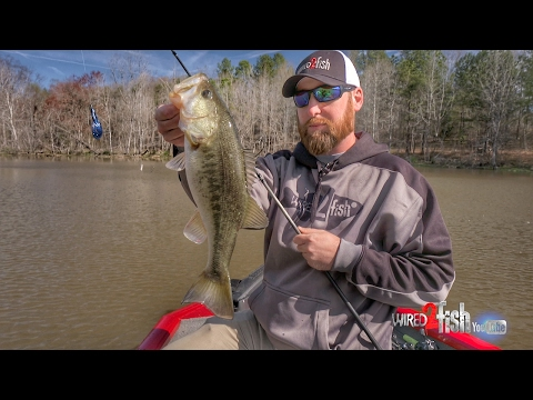 How To Adjust Your Fishing During Cold Fronts