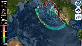Tsunami Forecast Model Animation: Cascadia 1700