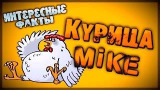 видео Безголовый цыпленок Майк
