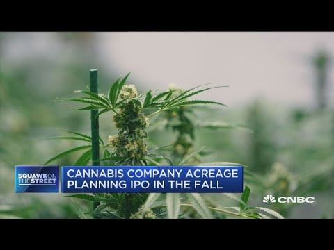 Canadian cannabis investors in pre ipo