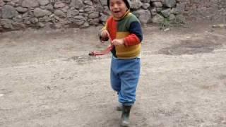 Uso del Tiracho en Huanza - Huarochiri