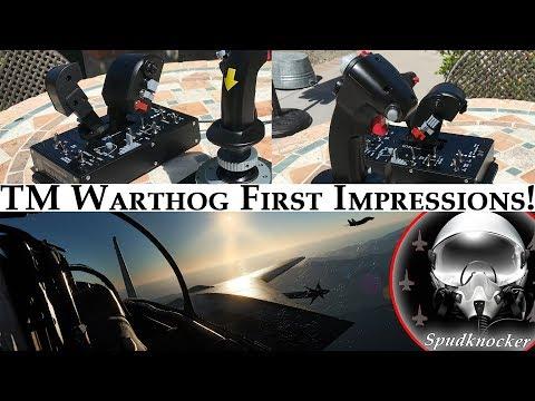Thrustmaster Warthog HOTAS Fight Flight & Impressions! | Feat. Heablur's DCS: F-14B Tomcat