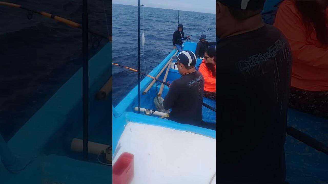 Download De pesca con camarón vivo (salinas)
