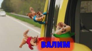 Элвин И Бурундуки Перепели Песню Валим(Нурминский)