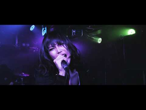 【MV】FAKE ISLAND「Fortune」
