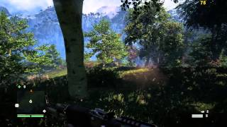 [EVGA GTX 980] *FAR CRY 4 PC* 1080P