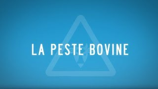 Peste Bovine, Plus Jamais !