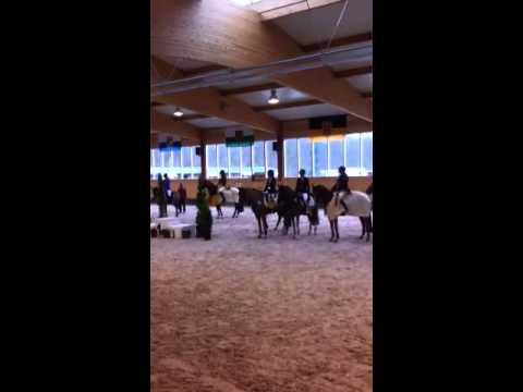 Süddeutsche Ponymeisterschaften Linkenheim - Nationalhymne
