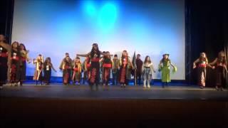 Danza Mapuche Wingka Onal