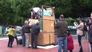 INICIA PROCESO DE RESTAURACIÓN A MONUMENTO DE JUAN RODRÍGUEZ CABRILLO