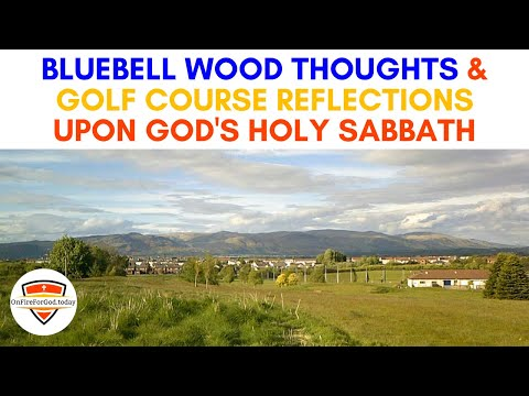 Bluebell Wood Thoughts & Golf Course Reflections upon God's Holy Sabbath