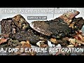 AJ 11 DMP Extreme Restoration   Dumpster 2 DMP