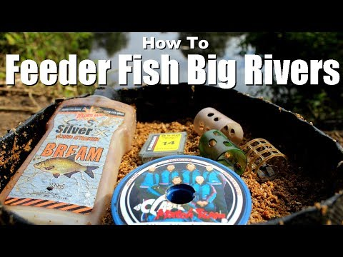 FEEDER FISHING ON RIVERS - HOW TO
