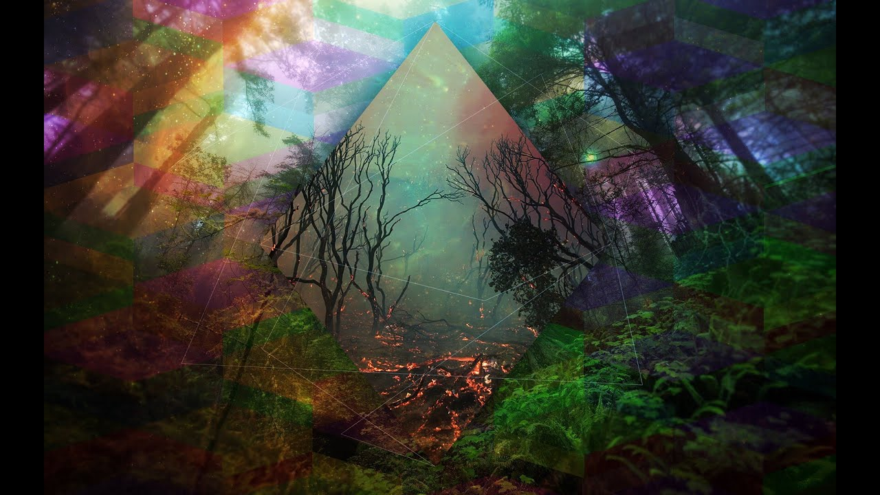 Forest 4k Quality Iphone Wallpaper: Dark Forest Psy Trance Mix 2015