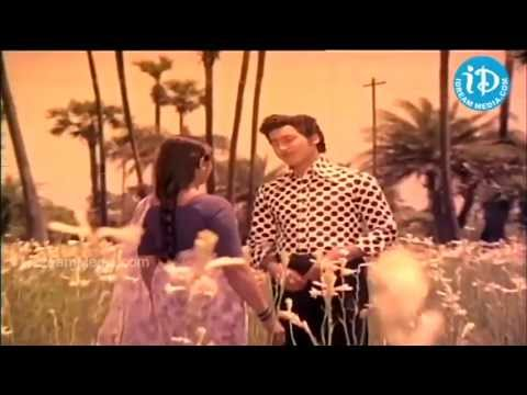 Elaaga Vachchi Song - Gorintaku Movie, Shobhan Babu, Sujatha, Savitri, Dasari Narayana Rao
