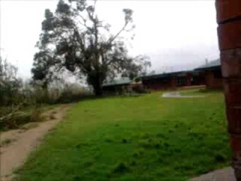 The aftermath of Cyclone Yasi 2011