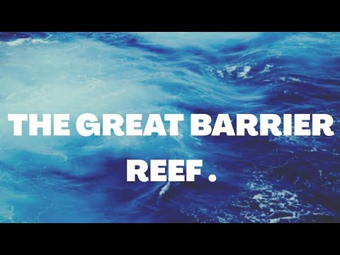 THE GREAT BARRIER REEF || Promotional Videoиз YouTube · Длительность: 5 мин1 с