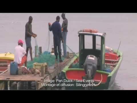 Image du jour 7: Carte postale de Guadeloupe
