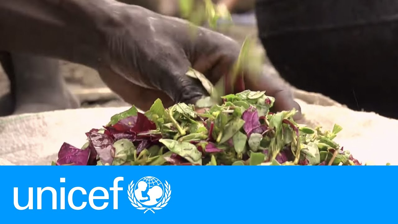 """we are eating grass because there is no food."""" – south sudan"""