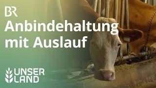 Mehr Tierwohl für Kühe: Laufstall statt Anbindehaltung | Unser Land | BR Fernsehen