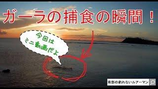 瀬長島しおさい公園でライトルアー釣りだ!