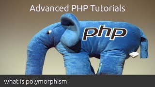 What is polymorphism - PHP tutorial