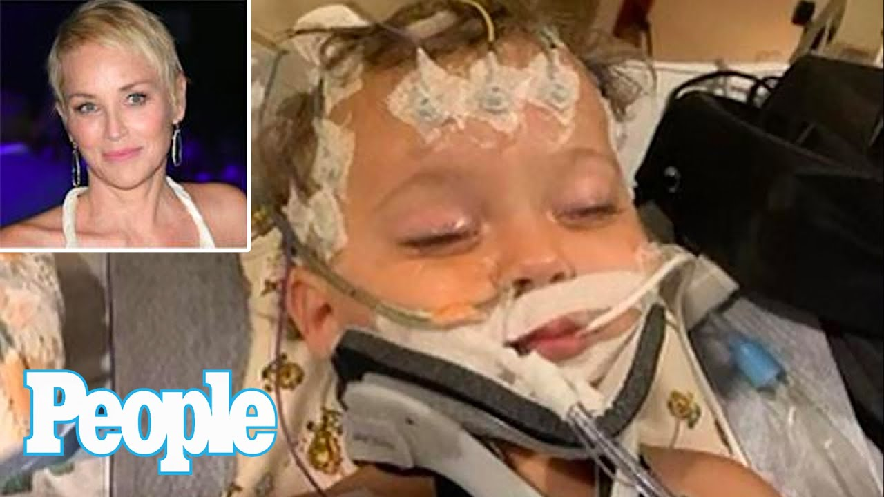 Sharon Stone's 11-month-old nephew hospitalized with 'total organ ...
