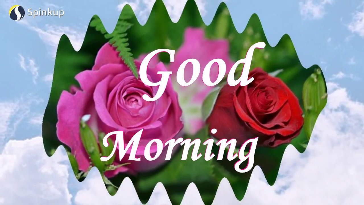 Sweet & Cute Lovely Good Morning Message to Friend-Good Morning Greetings,  Messages, Quotes