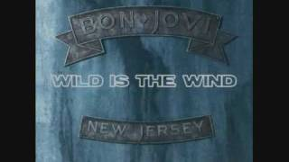 Watch Bon Jovi Wild Is The Wind video