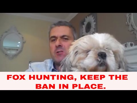 Why We Should Continue To Keep Fox Hunting Banned.