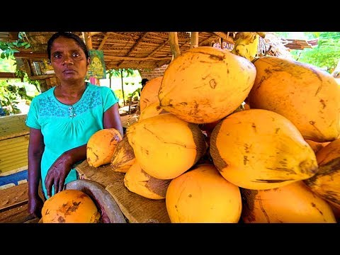 SRI LANKA STREET FOOD - King of Coconuts!! HUNGRY SRI LANKAN
