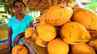 SRI LANKA STREET FOOD - King of Coconuts!! HUNGRY SRI LANKAN Food Trip to Anuradhapura!
