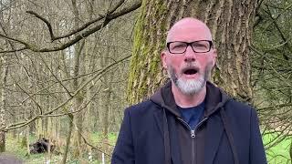 Theo Travis - Brilliant Trees (ft David Longdon)