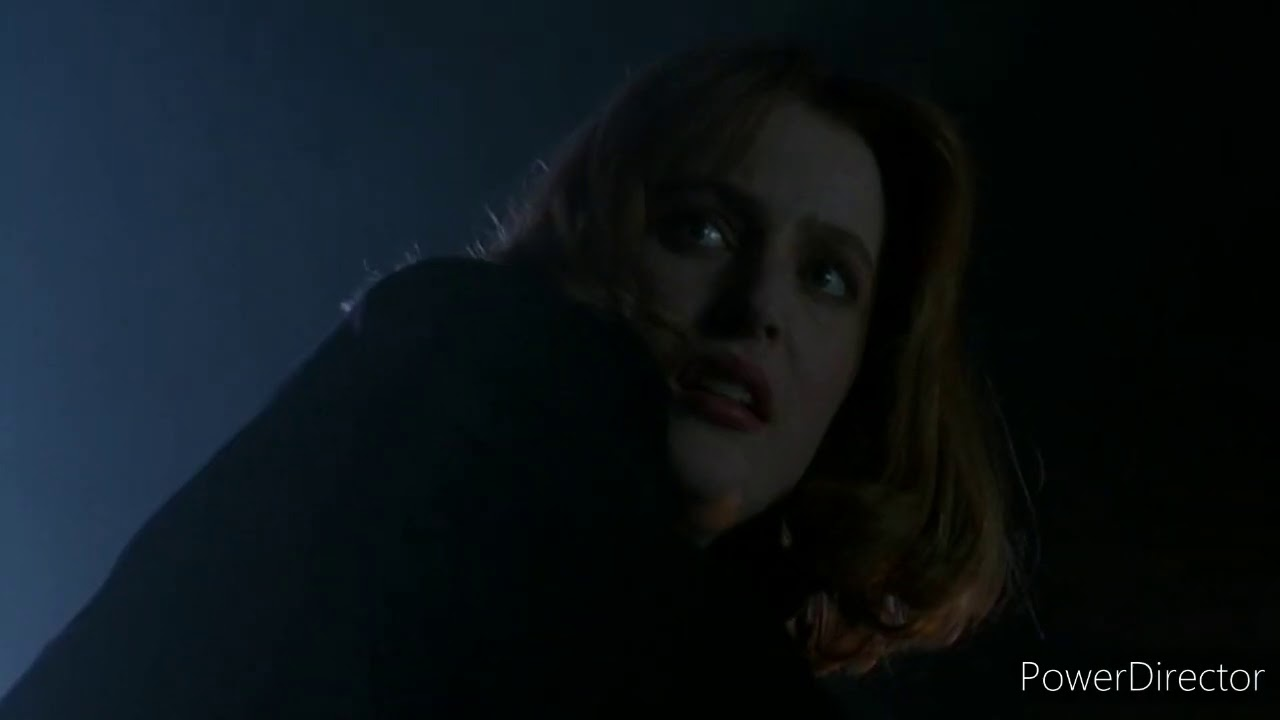 The X-Files Wharton Is Buried
