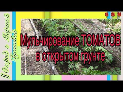 Природное земледелие видео видео ::