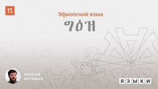 Эфиопский язык - Алексей Муравьев