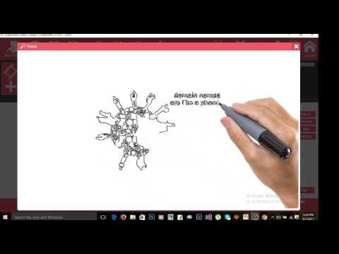 Explaindio Video Creator Tutorial Bangla Make your YouTube Video or fiverr Gig Video