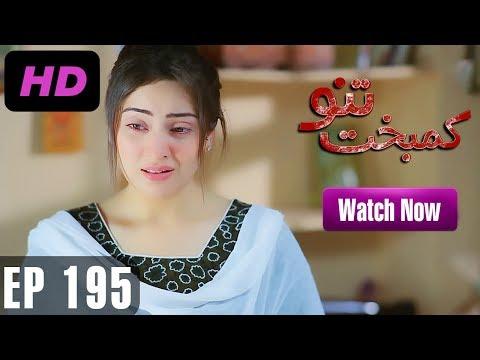 Kambakht Tanno - Episode 195 - A Plus ᴴᴰ Drama