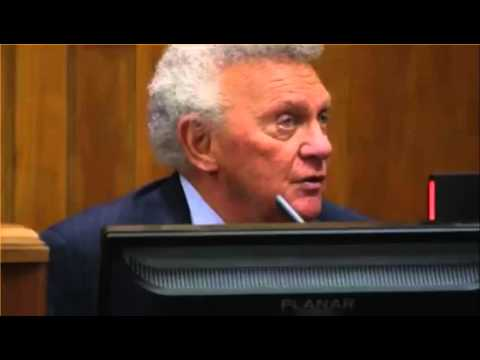 Erin Andrews Civil Trial Day 2 Part 1 02/24/16