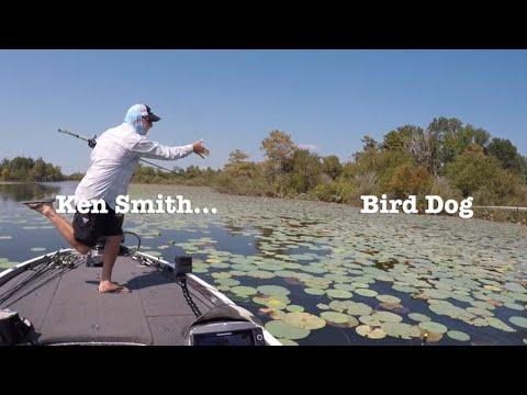 Sam Rayburn Bass Fishing Report Week Of 10 8 19 Part 1