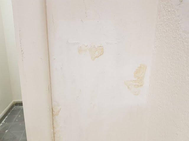 Comment Enlever Une Tache D Humidite Sur Mur Ou Plafond Youtube