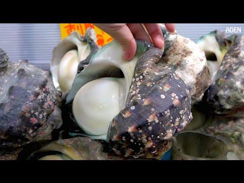 日本美食: 夜光貝